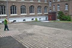 Collegium-Albertinium / Bonn